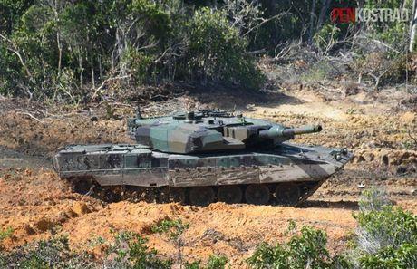Can canh sieu tang Leopard 2RI cua lang gieng Indonesia - Anh 5