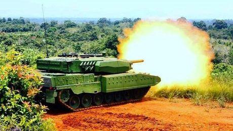 Can canh sieu tang Leopard 2RI cua lang gieng Indonesia - Anh 7