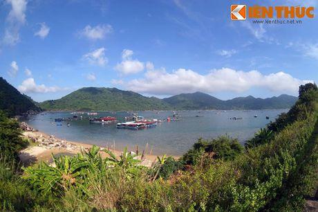 Dam say truoc khung canh ky vi cua vinh Vung Ro - Anh 12