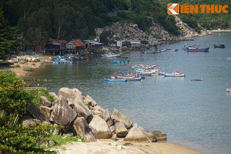 Dam say truoc khung canh ky vi cua vinh Vung Ro - Anh 15