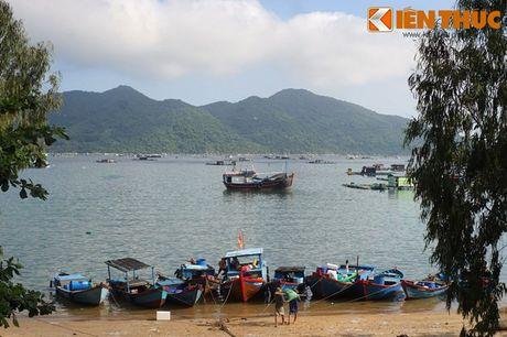 Dam say truoc khung canh ky vi cua vinh Vung Ro - Anh 18