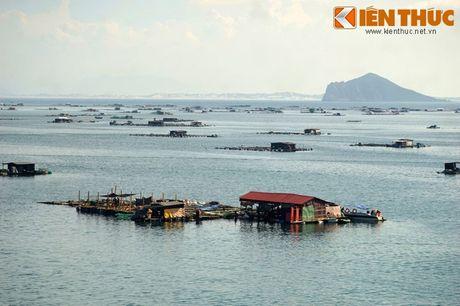 Dam say truoc khung canh ky vi cua vinh Vung Ro - Anh 7