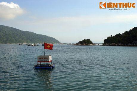 Dam say truoc khung canh ky vi cua vinh Vung Ro - Anh 8
