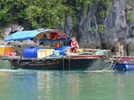 Hoa si Phap trien lam tranh ve Viet Nam tai bao tang que nha - Anh 3