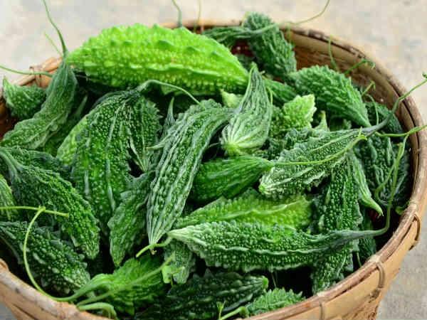 Kết quả hình ảnh cho mướp đắng chứa vitamin k