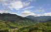 Bình Thuận: Triển khai các biện pháp quản lý bảo vệ rừng