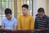 17 năm tù cho ba bị cáo truy đuổi nạn nhân dẫn đến chết đuối