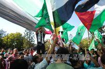 Liên đoàn Arab thúc đẩy triển khai thỏa thuận hòa giải Palestine