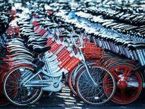 Dịch vụ chia sẻ xe đạp sẽ tiếp nối Uber tại Mỹ