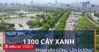 Hôm nay Hà Nội chặt hạ 1300 cây xanh trên đường Phạm Văn Đồng