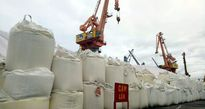 Di dời khẩn 4 vạn tấn lưu huỳnh lộ thiên khỏi cảng Hải Phòng