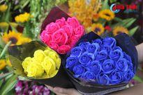 Ngắm hoa hồng lạ 'cực chất' được săn đón dịp 20/10 ở Hà Tĩnh
