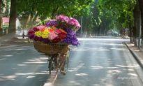 Ngày Phụ nữ Việt Nam 20/10: Thời tiết lý tưởng