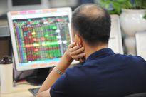 Cơ hội nào khi VN-Index liên tiếp lập đỉnh?