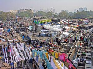 Tiệm giặt là bằng tay có hơn 7.000 nhân viên