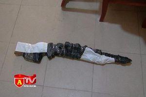 Bắt giữ đối tượng tàng trữ ma túy và súng săn tại phòng trọ