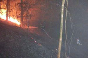 Cháy rừng phòng hộ Sóc Sơn: Chưa rõ nguyên nhân, 20 hộ dân phải di dời