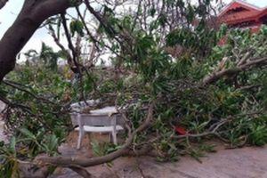 Bão Tembin càn quét quần đảo Trường Sa
