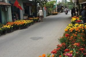 Thành phố Hồ Chí Minh mừng đón Xuân sang