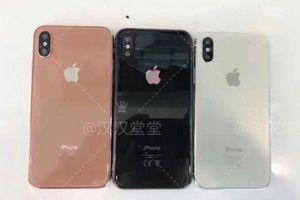 iPhone X sắp được bổ sung màu mới