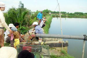 Ao nuôi tôm nhà phó trưởng ban tuyên giáo huyện bị đổ thuốc độc