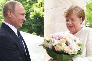Tổng thống Putin tặng hoa hồng cho Thủ tướng Merkel