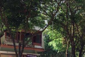 Saigontourist bỏ hoang, gây lãng phí, quản lý và sử dụng đất công sai quy định