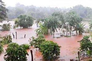 Gia Lai: Mưa lớn kéo dài gây ngập ở nhiều xã