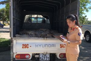 1.000 kg bì lợn bốc mùi được vận chuyển từ Hà Nội vào Thanh Hóa tiêu thụ