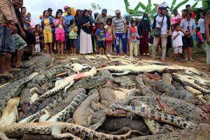 Dân làng vác dao, búa tới nông trại giết chết gần 300 con cá sấu báo thù cho người đàn ông