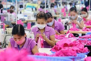 Máy móc, tự động hóa có thể khiến hàng triệu lao động nữ mất việc