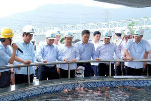 Thủ tướng Chính phủ thị sát hoạt động, làm việc với Formosa Hà Tĩnh