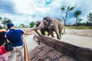 Công viên trên sông bảo tồn hơn 42.000 động vật hoang dã tại Quảng Nam
