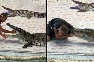 Thọc tay sâu vào họng cá sấu, huấn luyện viên bất ngờ bị cắn đến chảy máu