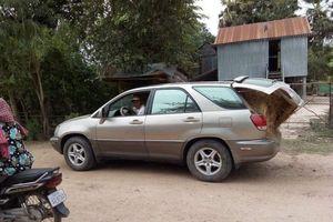 Nông dân Campuchia dùng xe Lexus chỉ để chở rơm