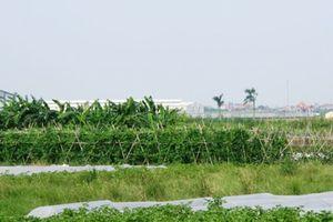 Loạt dự án 'đắp chiếu' tại Mê Linh sau 10 năm sáp nhập Hà Nội