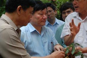 Hưng Yên: Từ Chủ tịch tỉnh trở xuống phải đi... bán nhãn