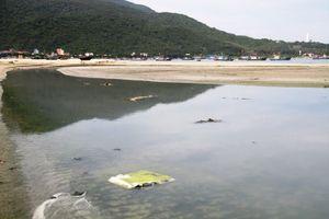 Thủ phạm xả thải ra biển Đà Nẵng là Tổ hợp khách sạn Kim Long Nam