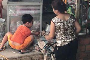 Bé trai Việt bỗng nổi tiếng báo Tây vì quyết không cho mẹ làm thịt chú vịt yêu quý
