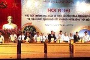 Saigon Co.op tham gia tiêu thụ nhãn lồng Hưng Yên