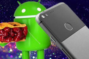 'Bánh hỏng' Android Pie khiến Pixel XL ngừng sạc nhanh hàng loạt