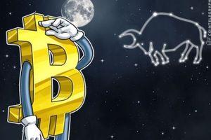 Giá tiền ảo hôm nay (15/8): 'Giá Bitcoin đang tiến về 0'