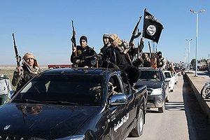Liên Hợp Quốc: Vẫn còn 30.000 quân IS ở Iraq và Syria