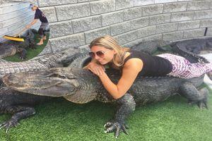 Điều ít biết về cô gái có sở thích 'chăm sóc cá sấu'