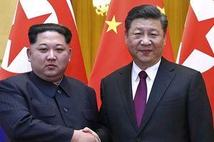 Ông Tập Cận Bình sắp có chuyến thăm đầu tiên đến Triều Tiên?