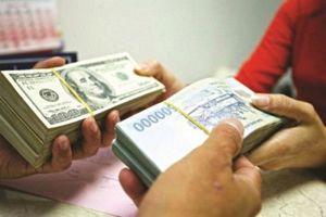 Vì sao giá USD thị trường tự do lao dốc mạnh?