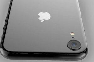 Hé lộ thông tin bất ngờ về 'hậu duệ' iPhone SE
