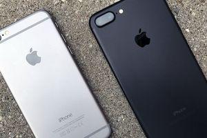 iPhone SE mới sẽ là bản nâng cấp của iPhone 7?