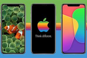 Apple sẽ đổi loại màn hình iPhone để tiết kiệm pin?