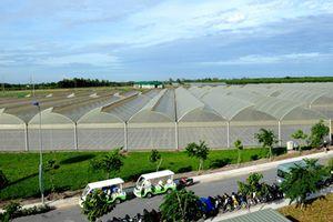 Dự án nông nghiệp có phải lập quy hoạch chi tiết?